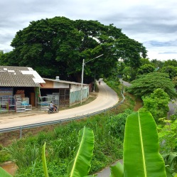 San Phak Wan