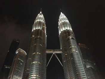 Twin Towers by night
